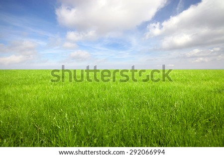 Green grass field with bright blue sky  - stock photo