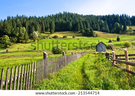 Green grass fields in the village with the houses nearby forest in the mountains at sunny day