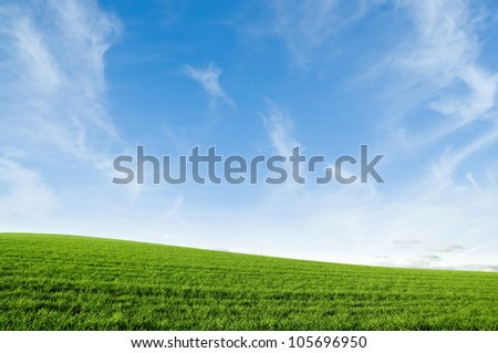 Green grass growing on a hill with bright blue sky. - stock photo