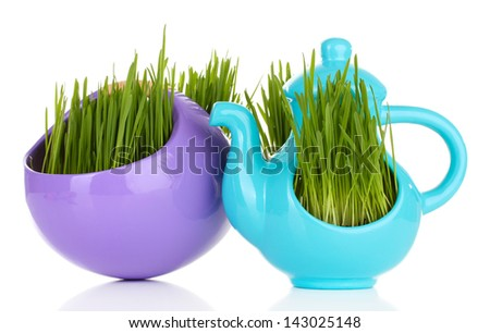 Green grass in decorative pot isolated on white