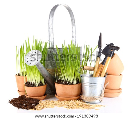 Green grass in flowerpots and gardening tools, isolated on white - stock photo