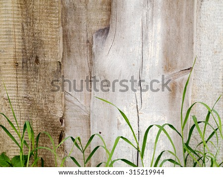 green grass in front of old wooden planks rustic fence, abstract landscape for all of your project - stock photo