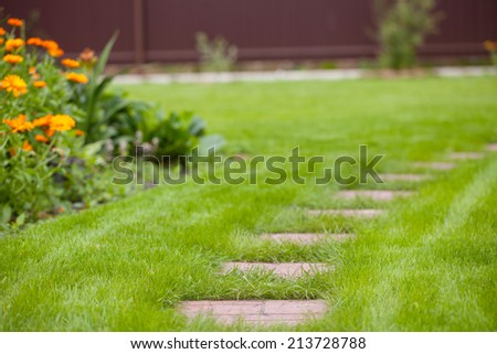 Green grass in park - stock photo