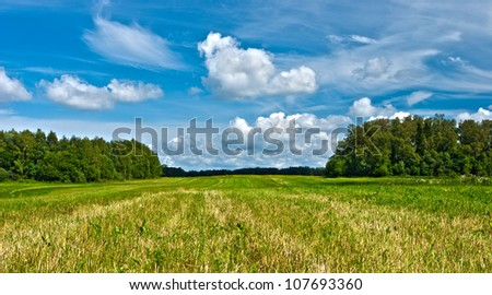 green grass in the field under blue sky with clouds - stock photo