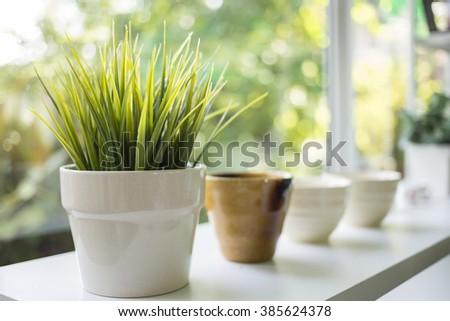 Green grass in white porcelain pot - stock photo
