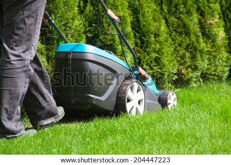 Green grass is mowed lawn mower in sunny day