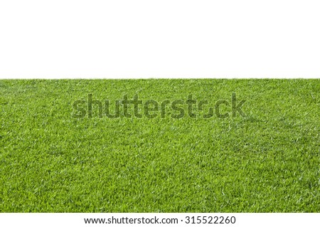 Green grass isolated on white background - stock photo