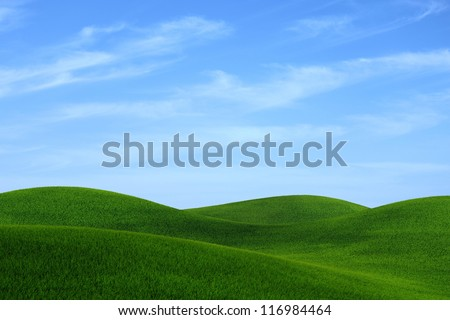 green grass landscape and coudy blue sky - stock photo