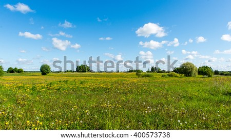 Green grass meadows and fields landscape in a sunny day. latvia
