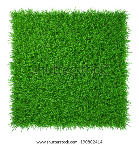 green grass. natural background texture. fresh spring green grass. - stock photo