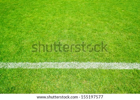 green grass of football sport field with white line for background