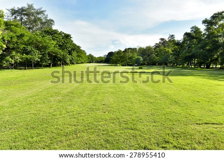 Green grass on a golf field  - stock photo