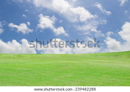 green grass on blue sky with clouds - stock photo