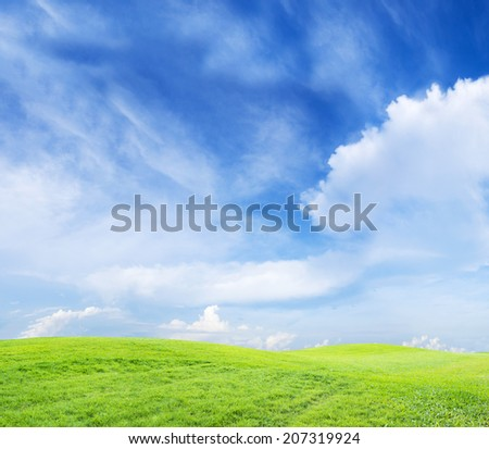 green grass on cloudy sky background - stock photo