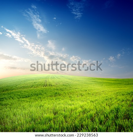 Green grass on field and clouds on sky