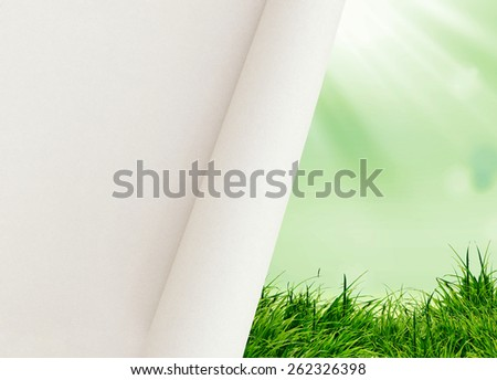 green grass on the blue background  - stock photo