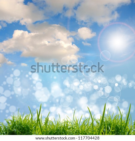 green grass on the blue sky - stock photo