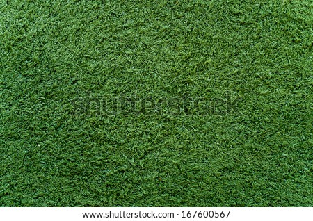 green grass on the ground