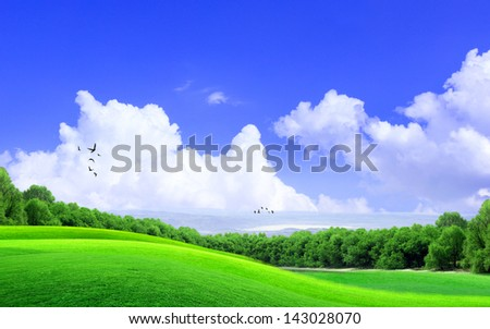 Green Grass on the hill with cloud and the blue sky - stock photo