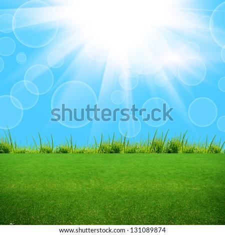 green grass on the summer field - stock photo