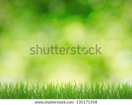 Green grass over sunny nature background - stock photo