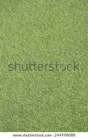 Green grass seamless texture. Seamless in only horizontal dimension.  - stock photo