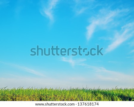 Green grass, sky on a day with sun - stock photo