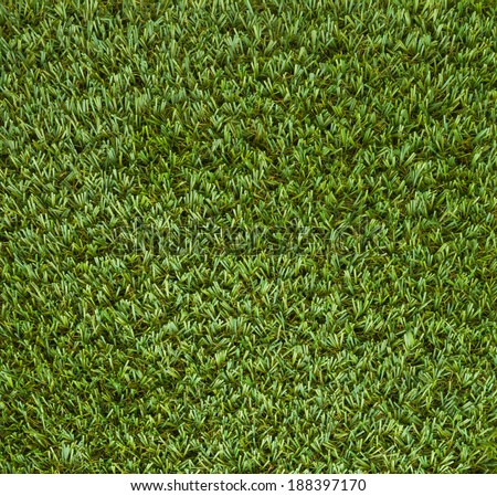 Green grass texture  course for background - stock photo