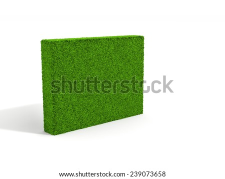 green grass wall on white background with shadow.