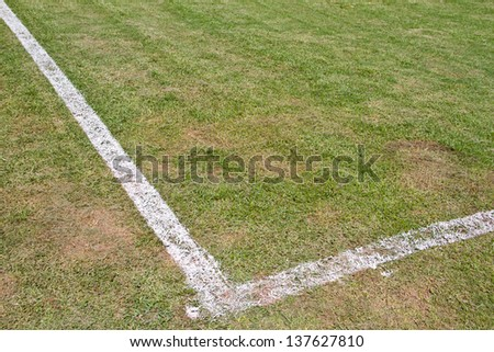 Green grass white line football pitch