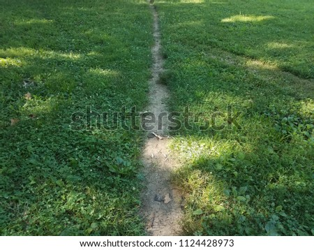 green grass with a dirt path