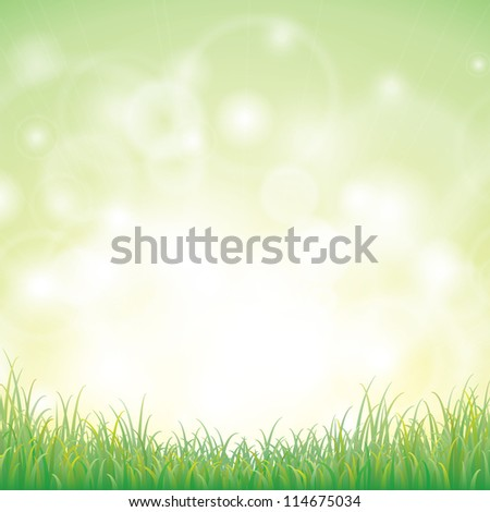 Green grass with background, Vector