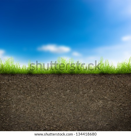 green grass with in soil over blue sky. Environment background - stock photo