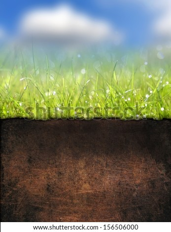 Green grass with soil texture - stock photo