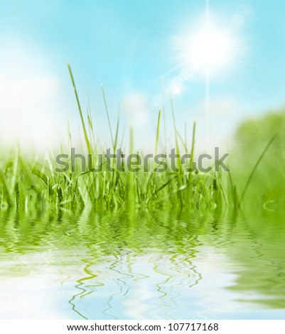 Green Grass with Water Drops