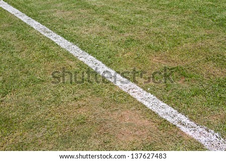 green grass with white line of football field