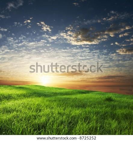 green grassland on sunset - stock photo