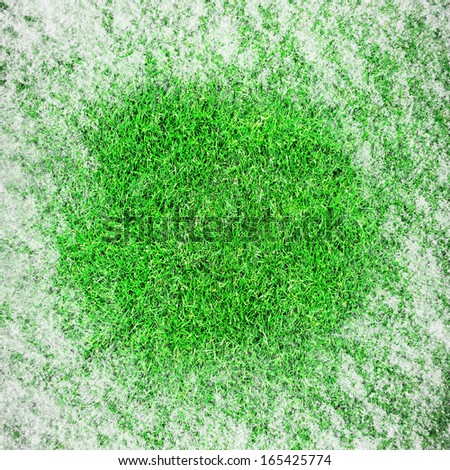 Green growing grass in snow - stock photo