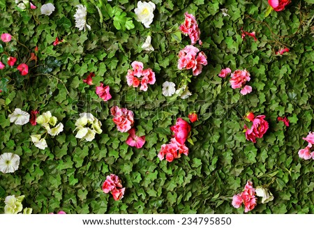 green hedge with plush, flowers - stock photo