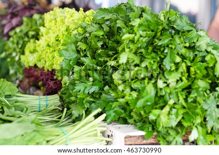 green herbs on the market counter