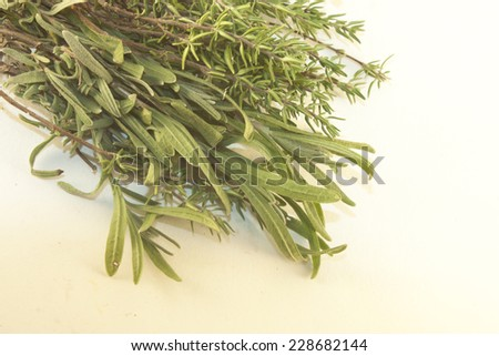 Green herbs, Thyme and rosemary. Isolated on white background - stock photo