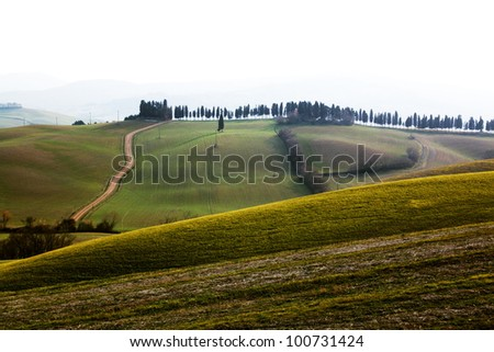 green hills in Lajatico, Italy - stock photo