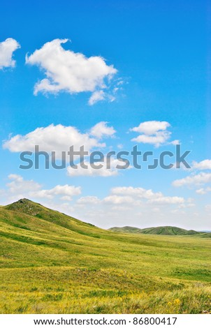 Green hills of steppe by summer