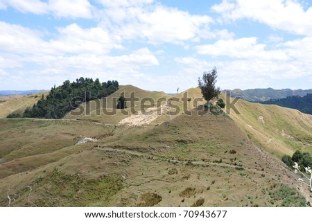 green hills on North Island, New Zealan