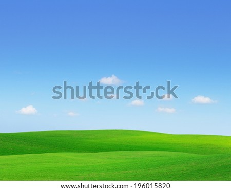 Green hills. Summer landscape with green grass and blue sky. - stock photo