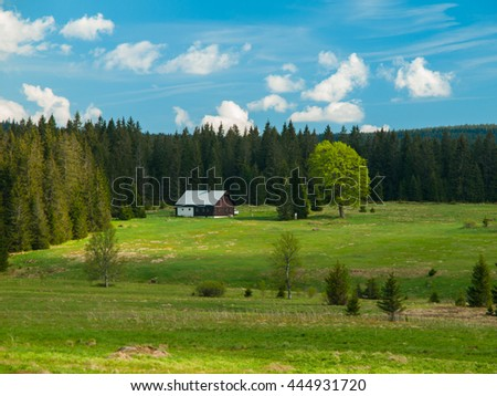 Green hilly rural landscape with meadows and forest on sunny day and blue sky with white clouds, Bohemian Forest, Sumava National Park, Czech Republic - stock photo