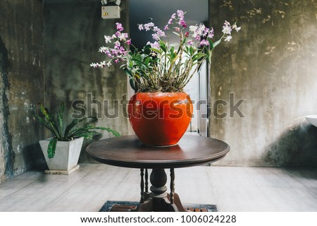 Green Home Plant In Flowerpot. Interior Room Background.