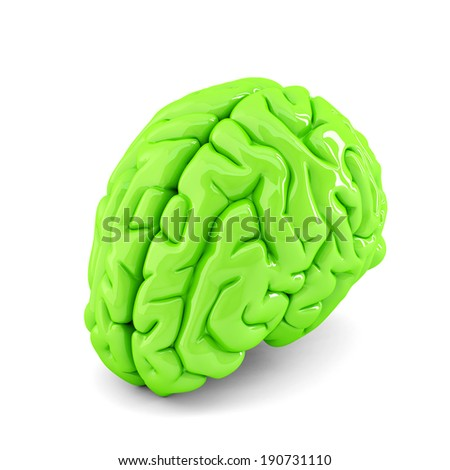 Green human brain close up. Isolate. Contains clipping path - stock photo