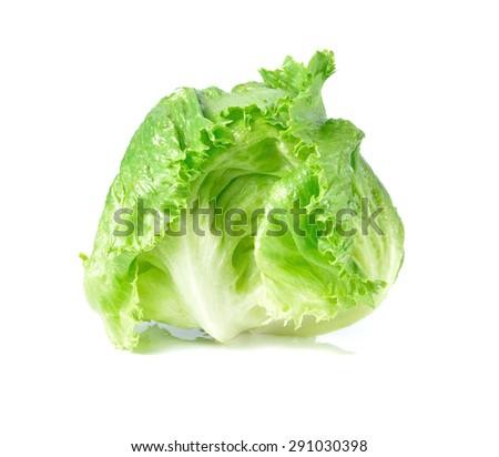 Green Iceberg lettuce on White Background - stock photo