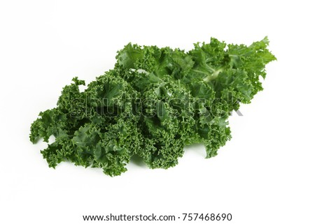 green kale with white background